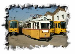The trams of Budapest!